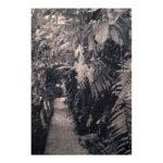 Hortus Botanicus 1, 30 x 21 cm, gemengde techniek op paneel