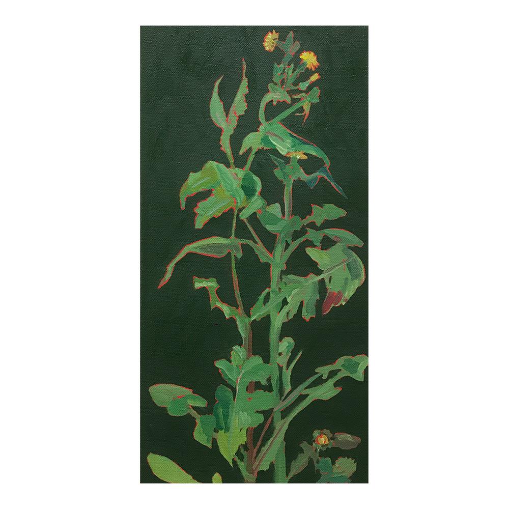 Moestuinschets, 40 x 25 cm, olieverf op doek