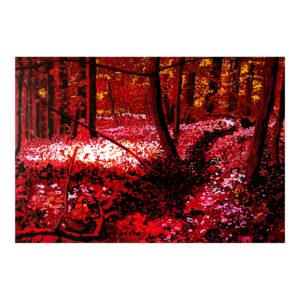 Redwoods 4, 70 x 100 cm, acrylverf en olieverf op doek